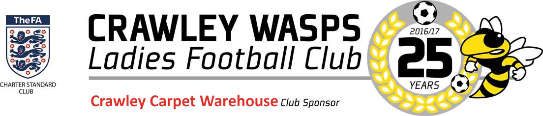 Crawley Wasps LFC